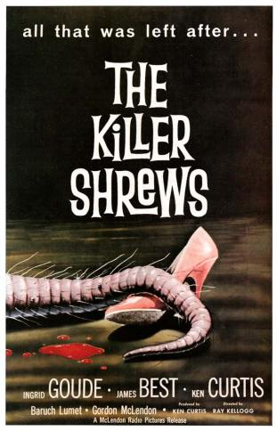 killer-shrews